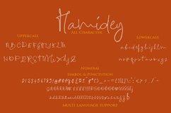 Hamidey Signature Font Product Image 5