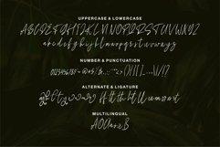 Web Font Allegra - Beauty Signature Font Product Image 4