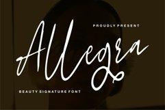 Allegra - Beauty Signature Font Product Image 1