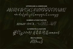 Allegra - Beauty Signature Font Product Image 4