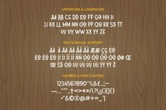 Web Font Alluring Product Image 5