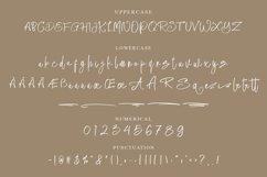 Almattine - Elegant Script Font Product Image 3