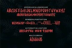 Web Font Alogra - Stylish Brush Font Product Image 5