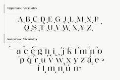 Voire - Beauty Elegant Serif family Product Image 4
