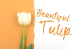 Antte Milla - Elegant Script Font Product Image 5