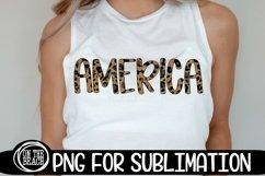 AMERICAN SUBLIMATION BUNDLE - 44 DESIGNS - PNG 300 DPI Product Image 3