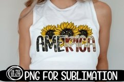 AMERICAN SUBLIMATION BUNDLE - 44 DESIGNS - PNG 300 DPI Product Image 6