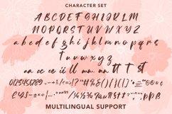Ammoysia - Beauty Handwritten Font Product Image 6