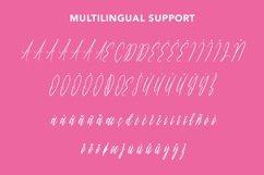 Web Font Anastasi - Lovely Calligraphy Font Product Image 2