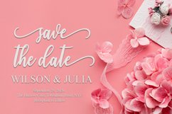 andalusia Script |WEB FONT Product Image 6