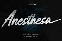 Anesthesa Handcrafted Script Font Product Image 1