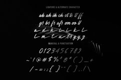 Anesthesa Handcrafted Script Font Product Image 3