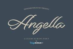 Web Font Angella Font Product Image 1
