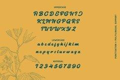 Web Font Angilen Font Product Image 2