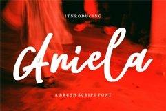 Aniela - A Brush Script Font Product Image 1