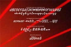 Aniela - A Brush Script Font Product Image 2