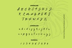Web Font Anitae Balies Font Product Image 2