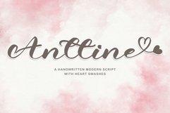 Anttine Product Image 1