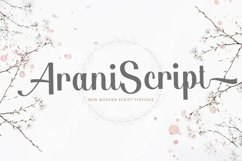 Web Font Arani Product Image 1