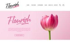 Handrush Product Image 2