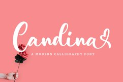 Candina - Lovely Script Font Product Image 1