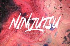Ninjutsu Product Image 1