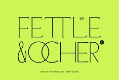 ED Fettle & Ocher display Product Image 1
