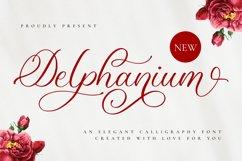 Delphanium - Romantic Calligraphy Font Product Image 1