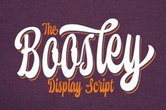 Boosley - Display Script Product Image 1