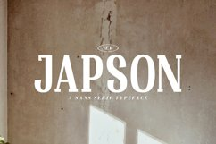 Japson Product Image 1
