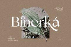 Binerka - Stylish Serif Font Product Image 1