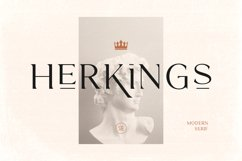 Herkings - Minimalis & Modern Serif Product Image 1