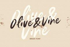 Olive & Vine - Brush Font Product Image 1