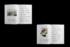ED Fettle & Ocher display Product Image 4
