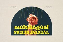 Nighty - Vintage Serif Typeface Product Image 3