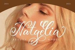 Amerliosa - Elegant Font Product Image 2