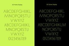 ED Fettle & Ocher display Product Image 6