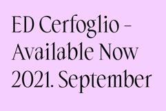 ED Cerfoglio Product Image 2