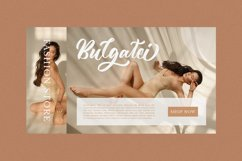 Aghitta - Brush Script Font Product Image 3