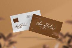 Amerliosa - Elegant Font Product Image 4