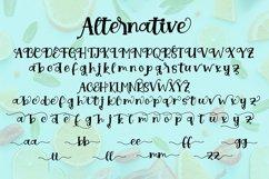 Nobula || handwriting font Product Image 3
