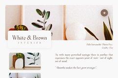Milane - Classic Serif Font Product Image 4