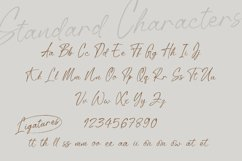 Anstally Script Font Product Image 4