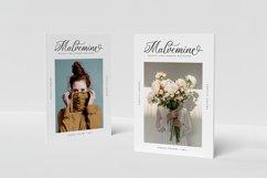 Delphanium - Romantic Calligraphy Font Product Image 5