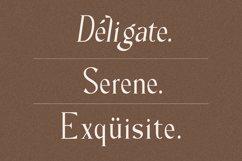 Milane - Classic Serif Font Product Image 6