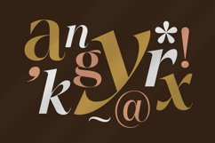 Between Days - Sophisticated Serif Product Image 2