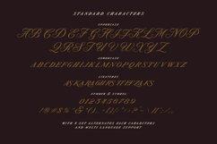 Modern Prestige - Romantic Serif Product Image 3