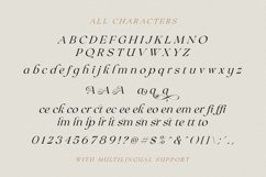 Claire Murphy - Stylish Italic Serif Product Image 6