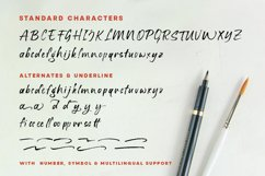 Stay Strong - Dry Brush Font Product Image 4