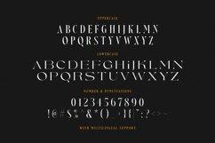 Nefarious - Modern Serif Product Image 4